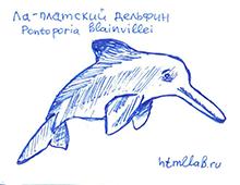 Ла-платский дельфин